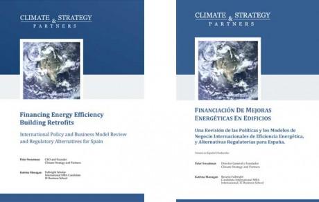 Climate & Strategy (DE)